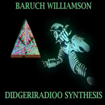 Baruch Williamson - Didgeriradioo Synthesis front cover