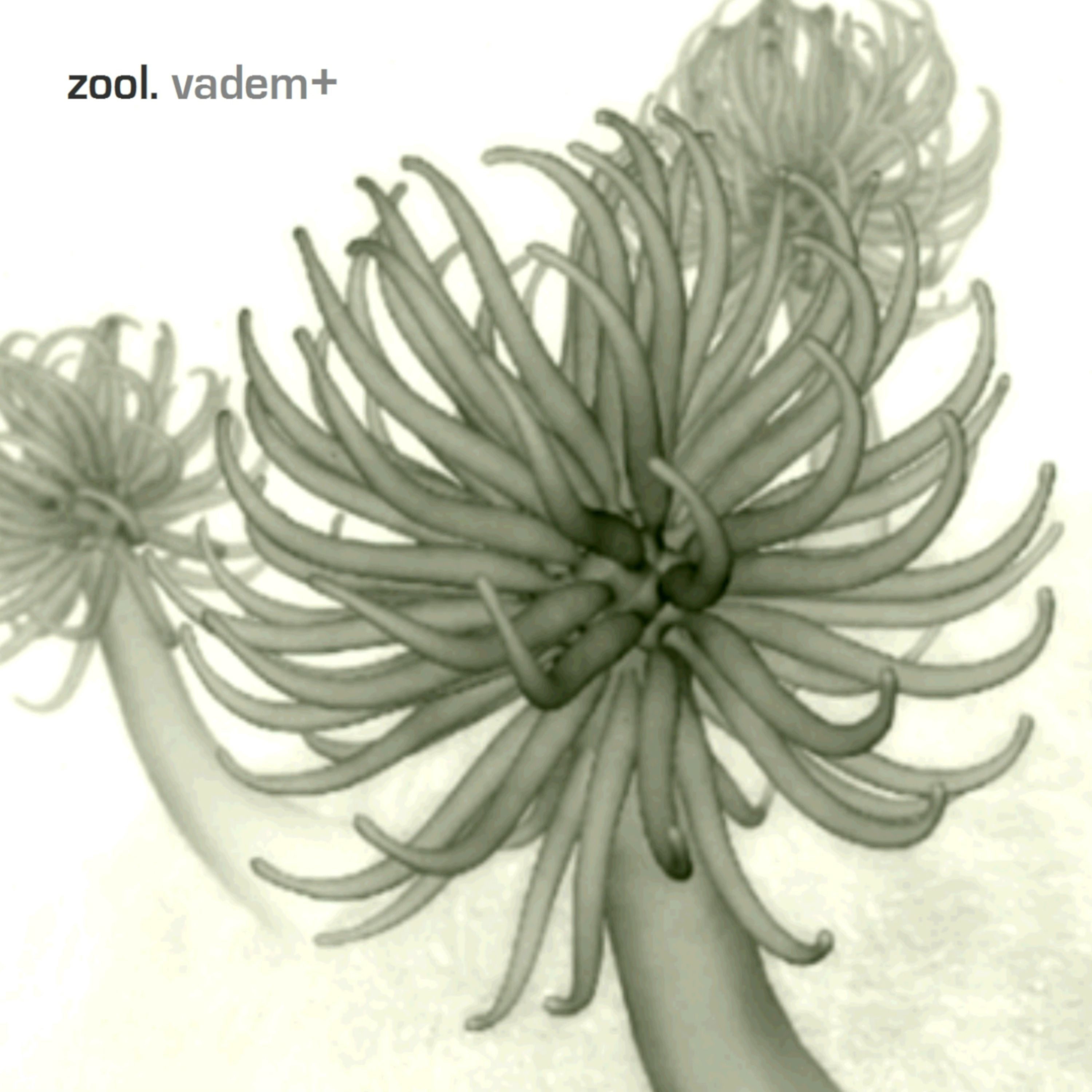 Zool. - Vadem + front cover