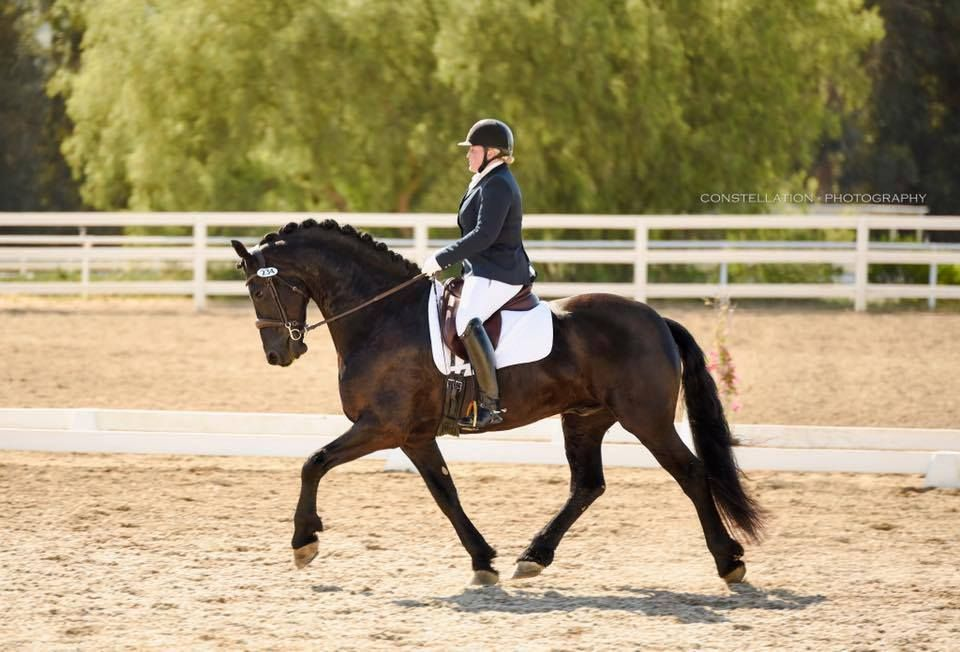 alison burt jacobs on horse dressage