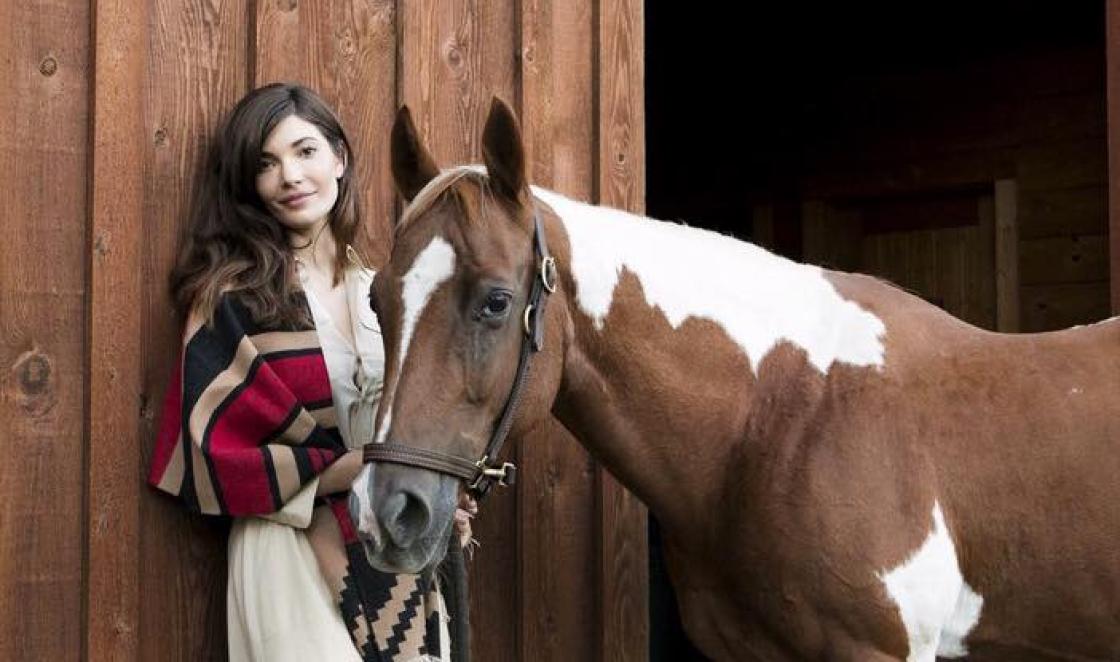 horse seo