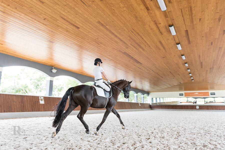 para-dressage competitor katie jackson and her horse