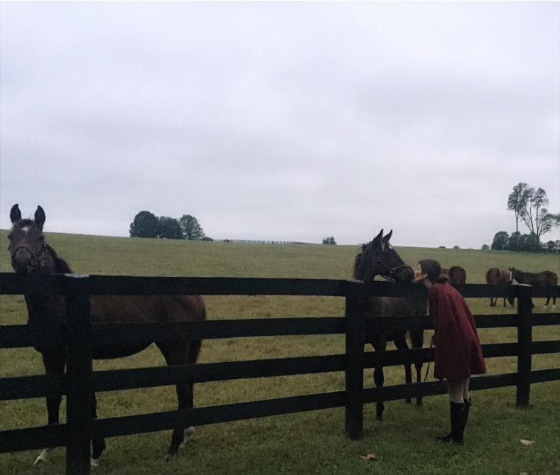 Julia Jackson saying hello to her horses