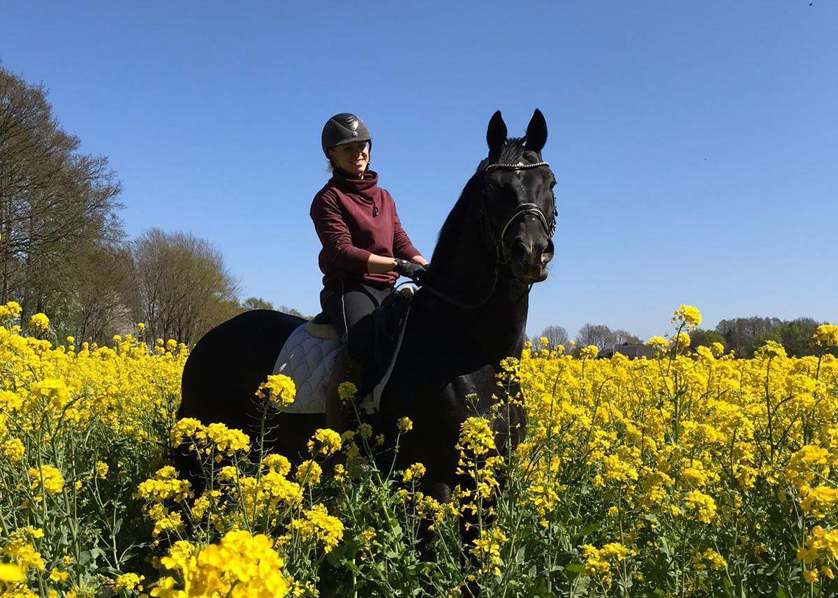 brandi roenick and her horse