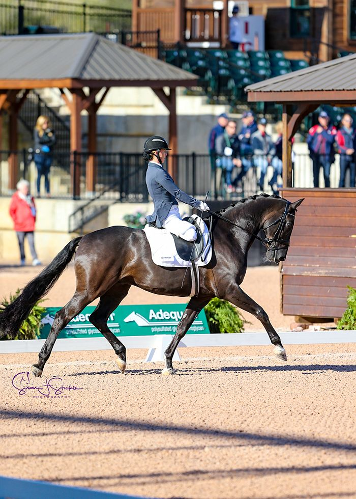 katie jackson paradressage equestrian with horse