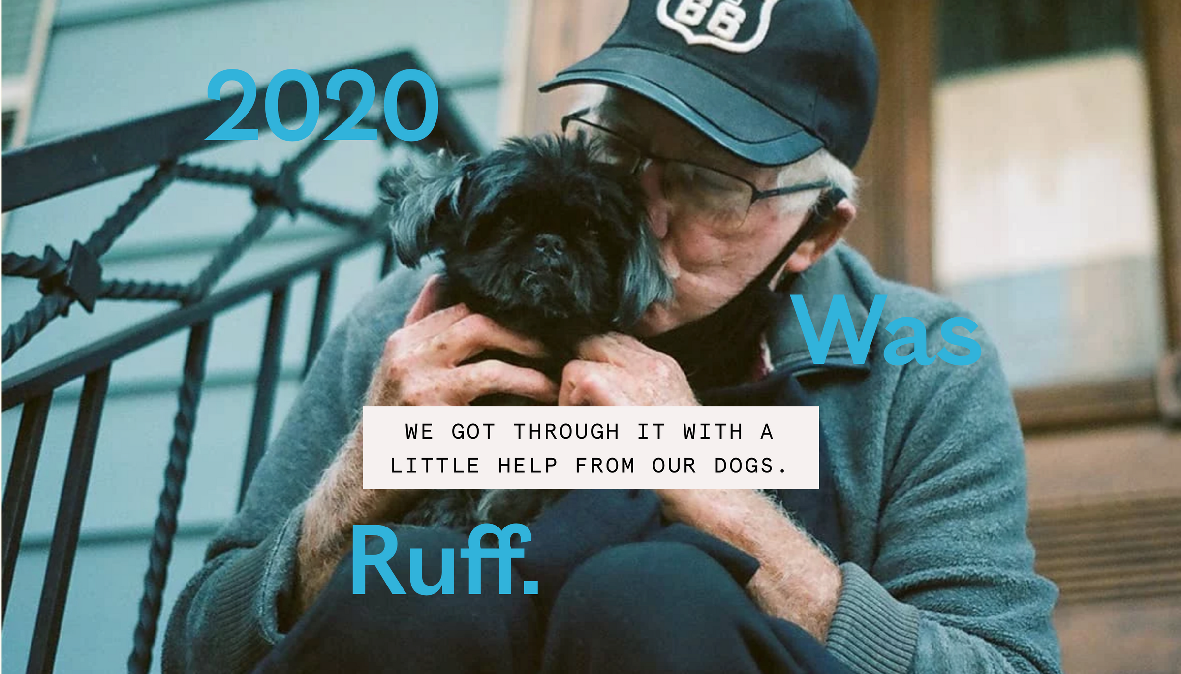 2020 was *ruff*. We got through it with the help of our dogs.