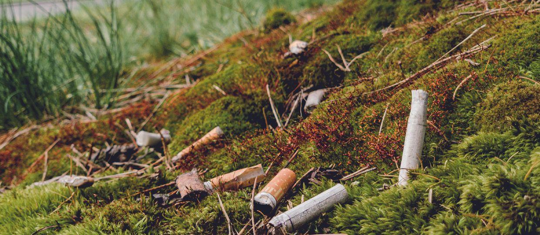 Cover Image for Vides aktīvisti iesaistās izsmēķu vākšanā