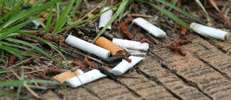 Cover Image for Cigarešu izsmēķis ir plastmasa, kas piesūcināta ar kaitīgām vielām