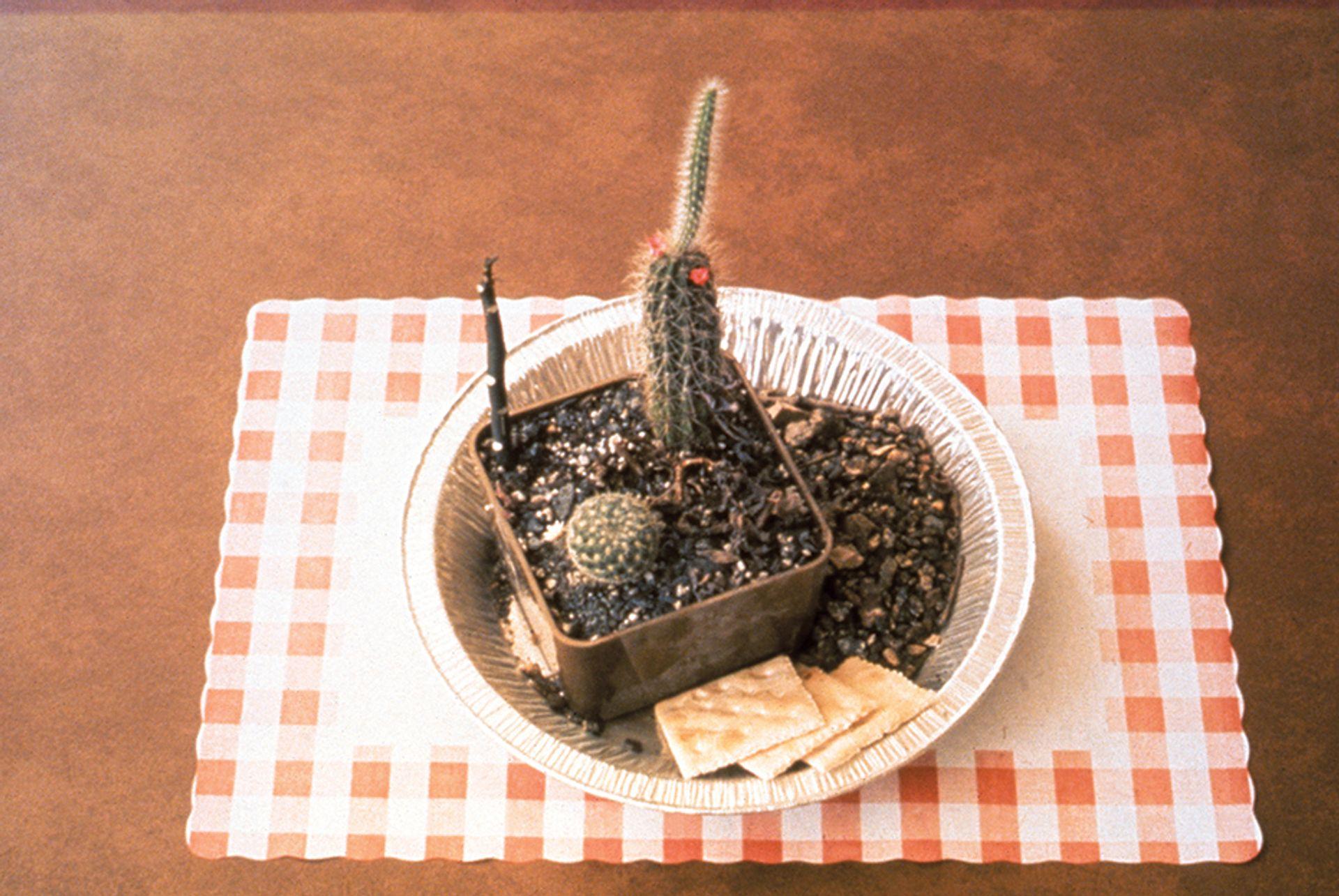 Allen Ruppersberg's Meals from Al's Cafe (1969) Courtesy of the artist, Greene Naftali, New York and Marc Selwyn Fine Art, Los Angeles; Photo: Gary Krueger, scan: Augusta Wood