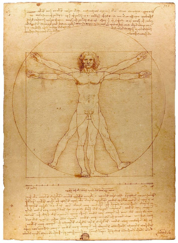 Leonardo's iconic Vitruvian Man (1490)