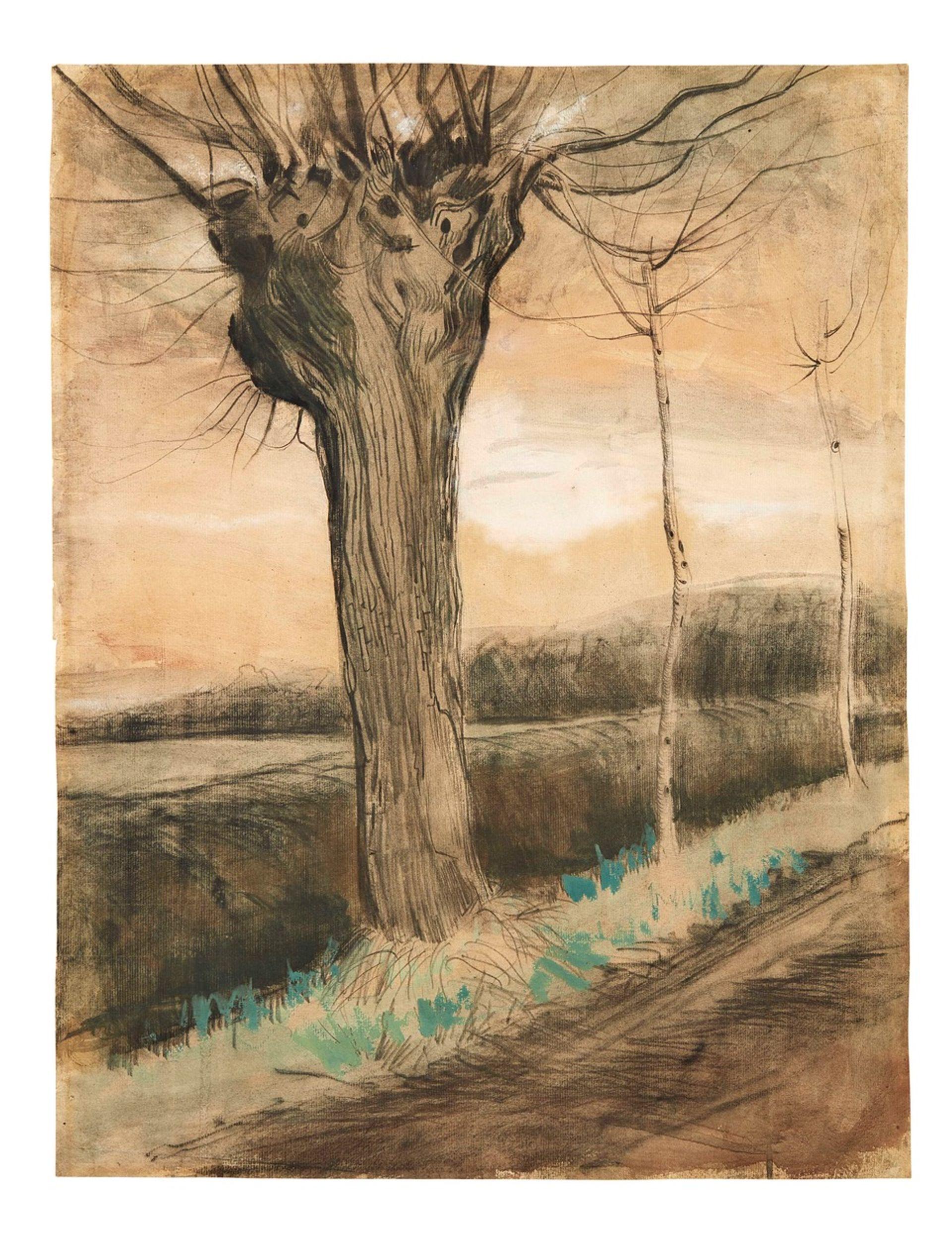 Vincent van Gogh's Pollard Willow (1881) Pandolfini Casa d'Aste, Milan