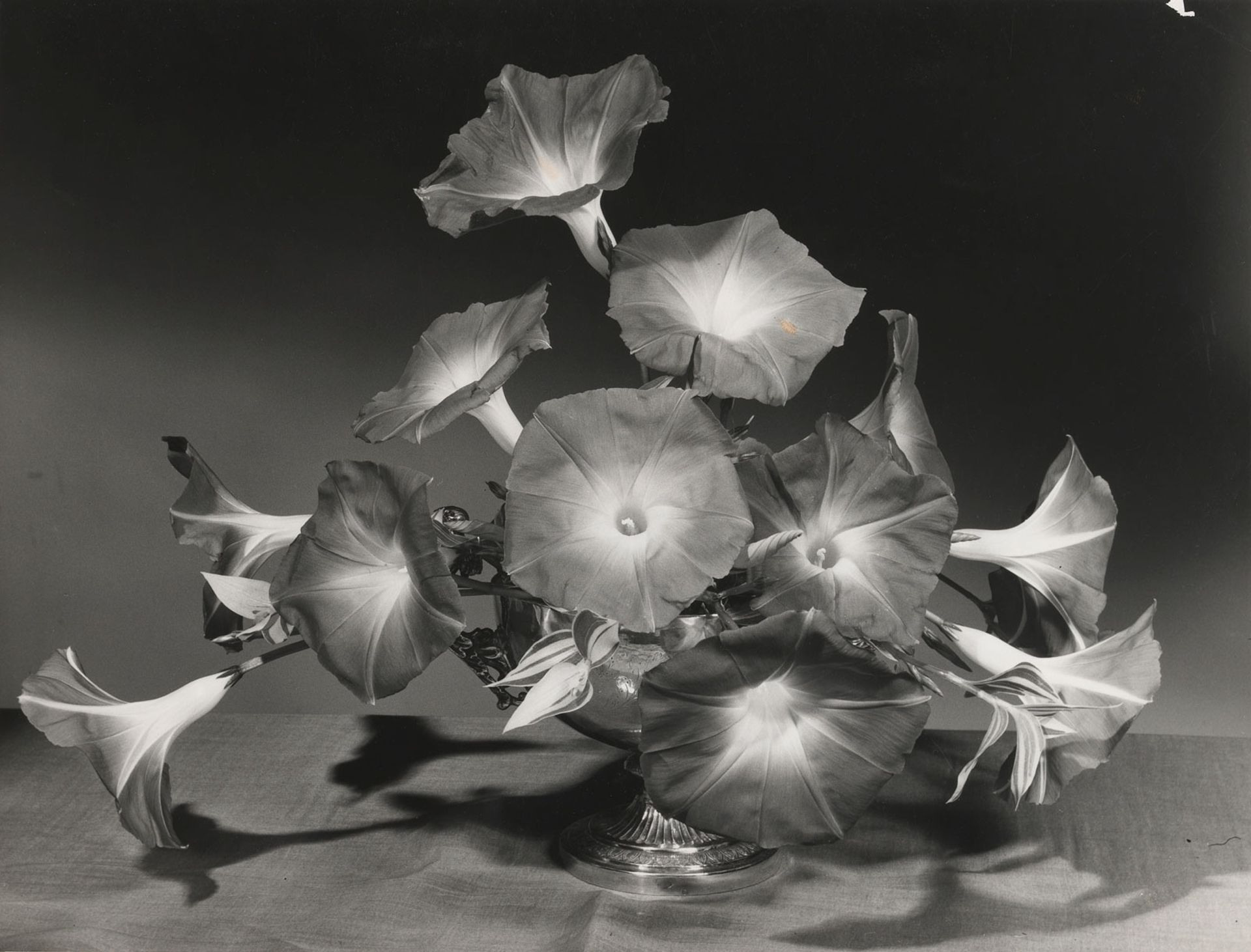Morning glory arrangement by Constance Spry (around 1930) Photo: Cowderoy & Moss Ltd; RHS Lindley Collections