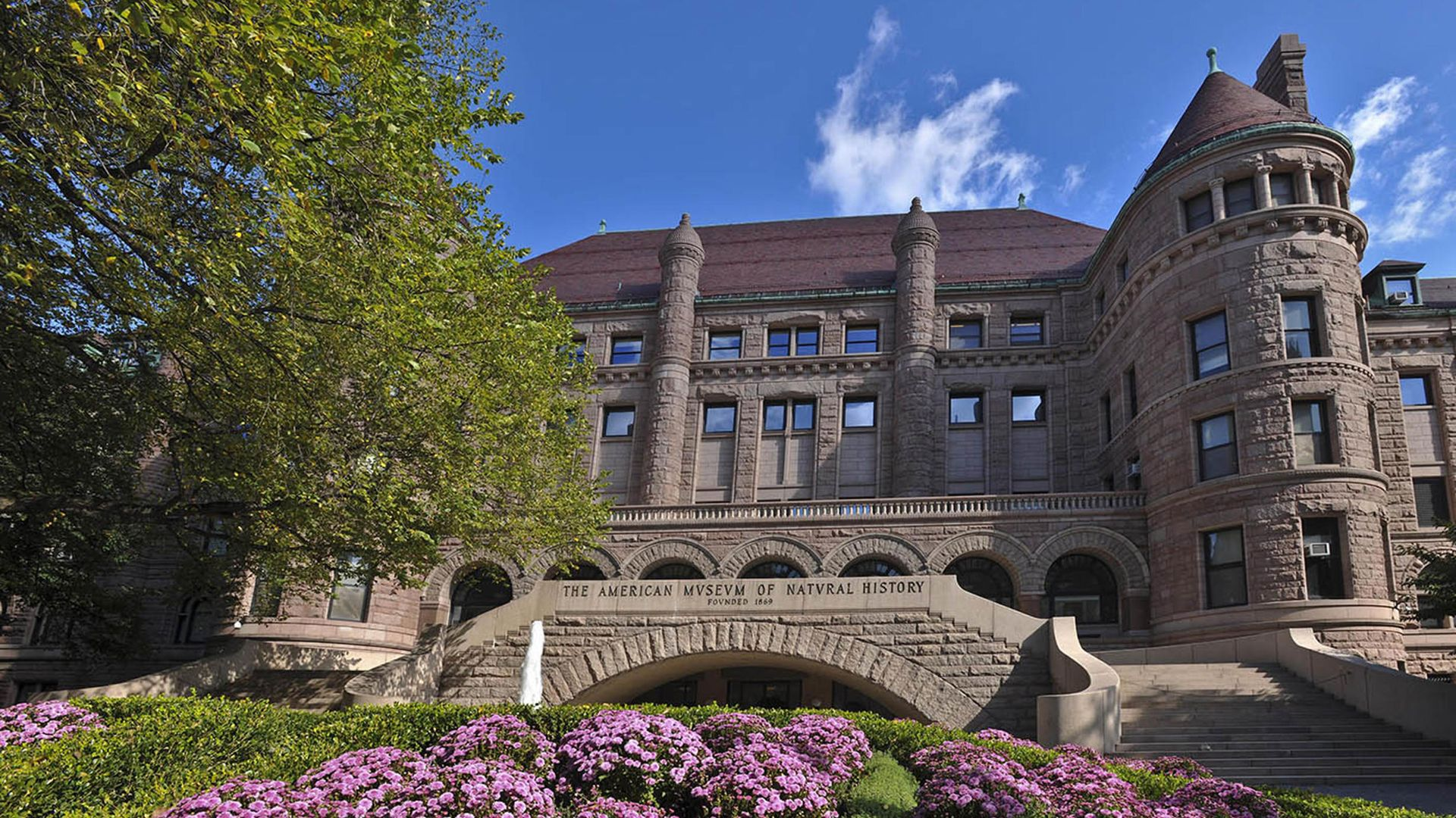 The American Museum of National History in New York D. Finnin/© AMNH