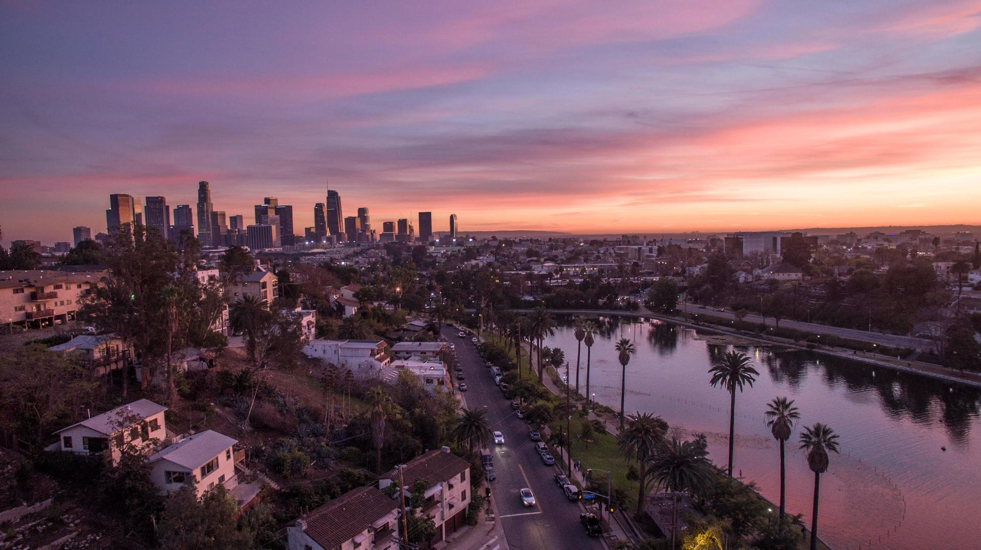 Echo Park Lake with the Downtown Los Angeles Skyline in the distance Photo: Adoramassey via Wikimedia Commons