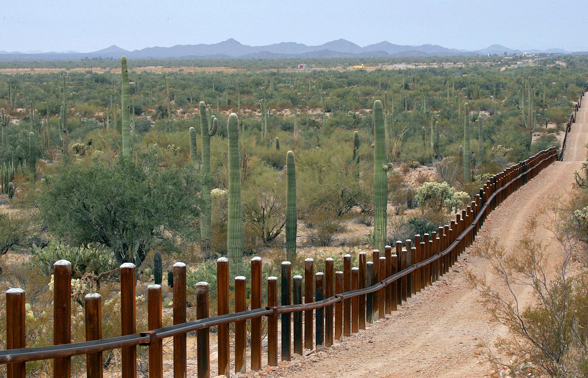 A highly detailed National Park Service report describes the potential impact of border barrier construction at Organ Pipe Cactus National Monument, a 517-sq.-mile park and Unesco biosphere reserve in Arizona AP Photo/Matt York, File
