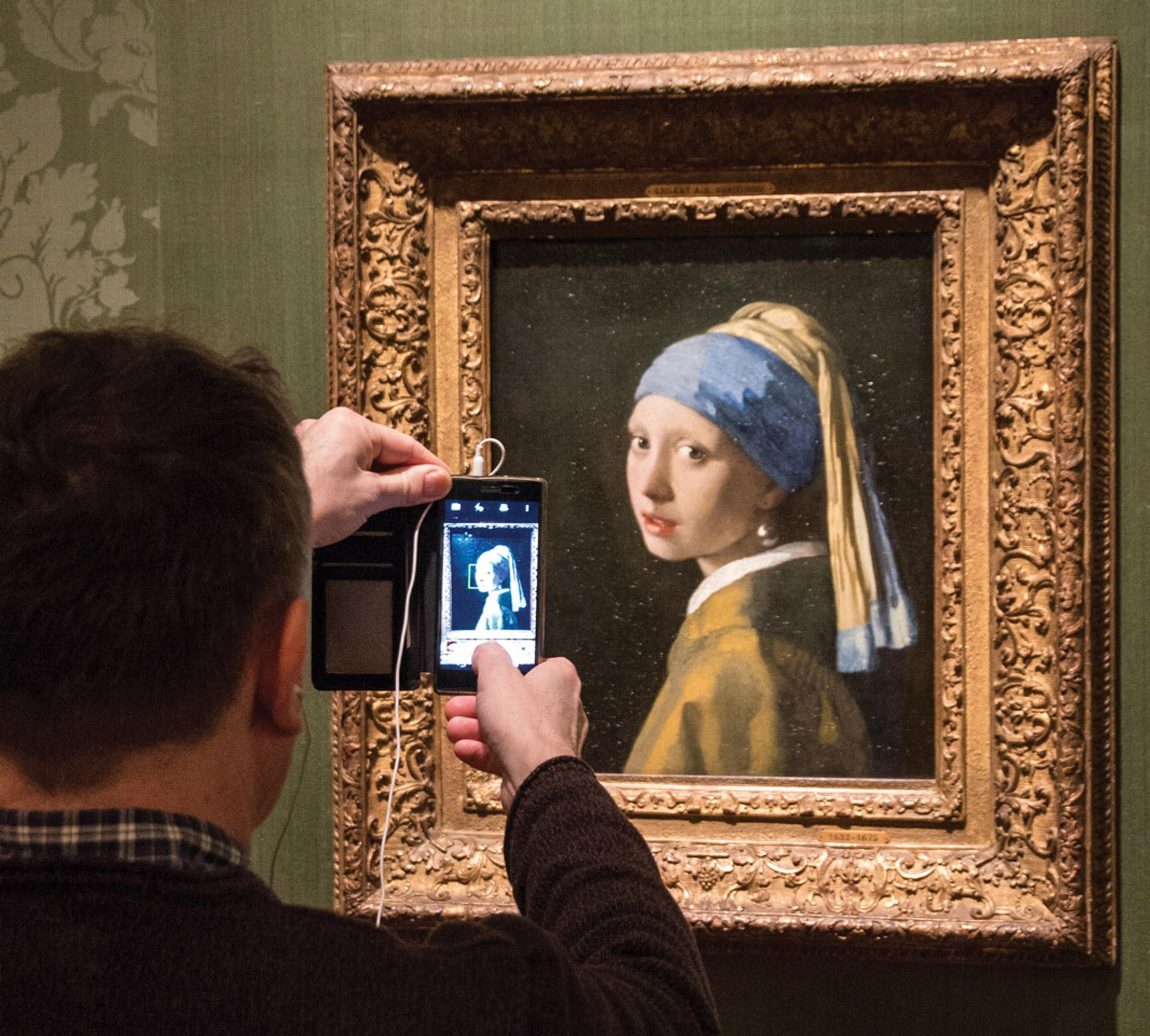 The Mauritshuis in The Hague, home to Vermeer's Girl With a Pearl Earring (1665), has released thousands of free digital images Jan Fritz / Alamy