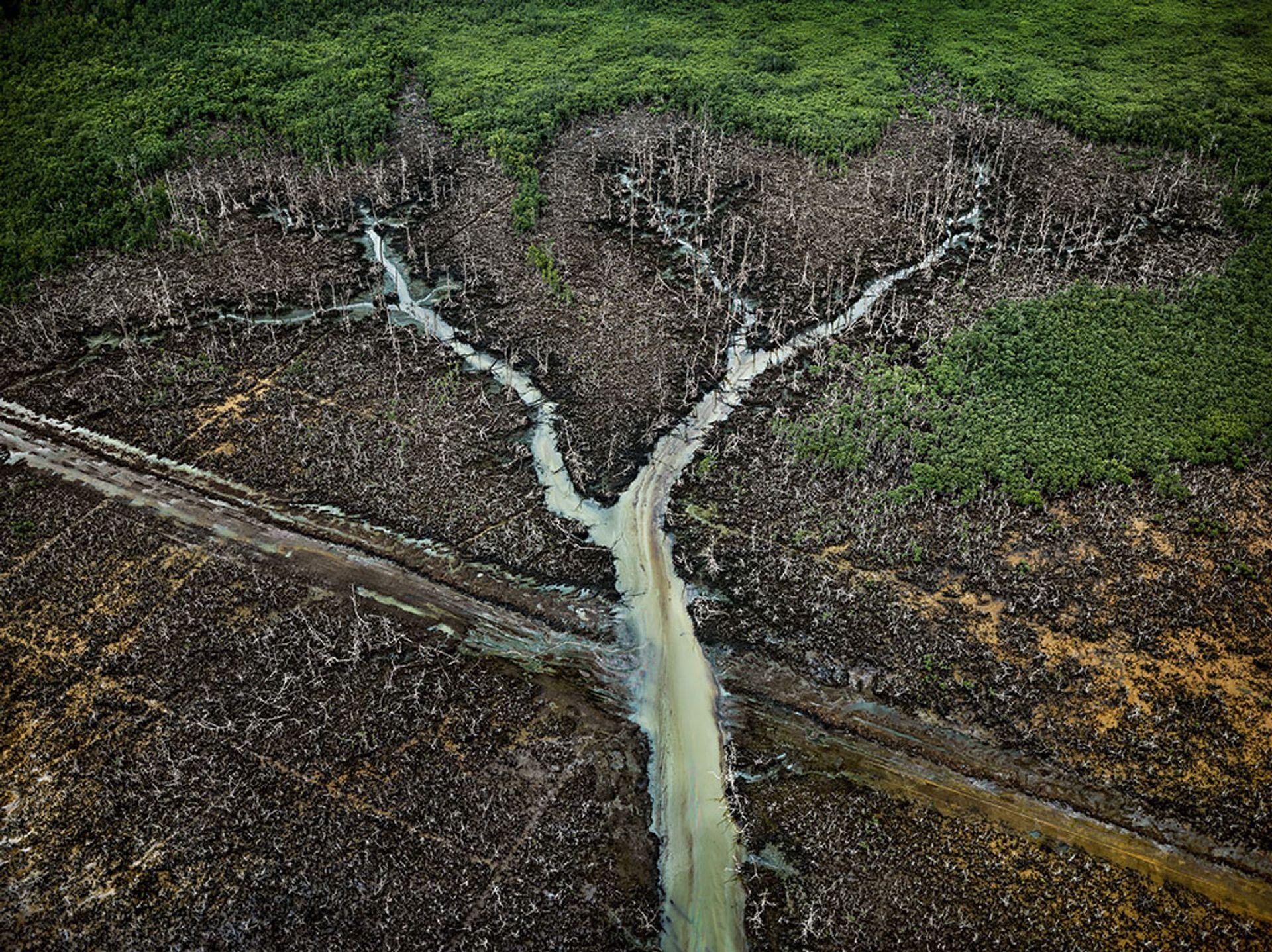 Oil Bunkering #2, Niger Delta, Nigeria, 2016 Edward Burtynsky, courtesy Metivier Gallery, Toronto / Flowers Gallery, London