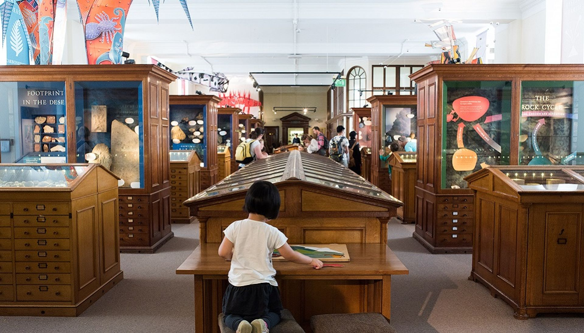 The Sedgwick Museum in Cambridge is one of the beneficiaries of the Arts Council England's grants programme © Sedgwick Museum of Earth Sciences