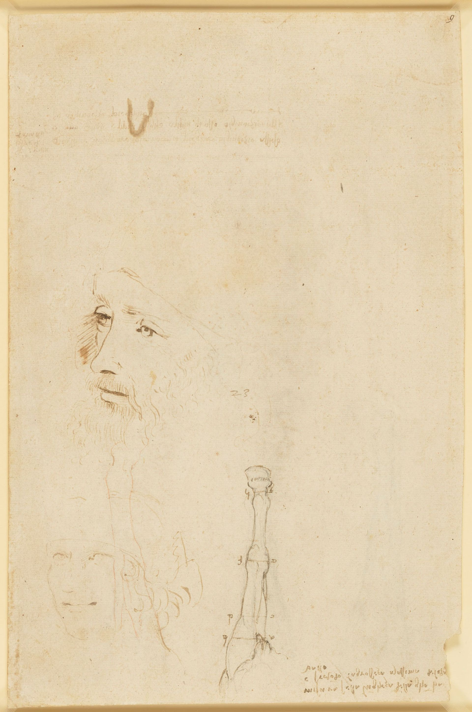 A sketch of Leonardo, the head of a youth, and a horse's legs (around 1517-18) Royal Collection Trust / © Her Majesty Queen Elizabeth II 2019