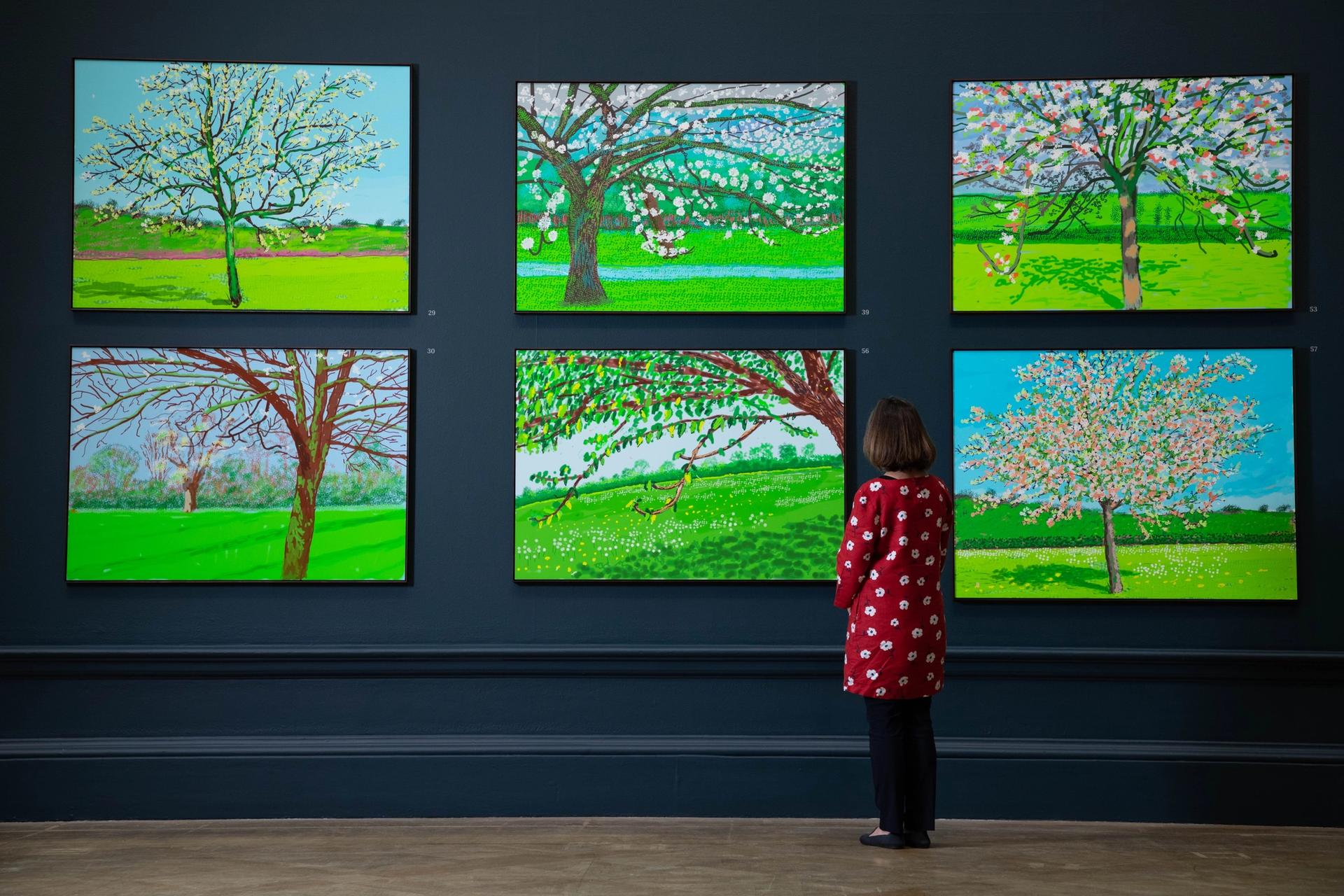 The Royal Academy should have had the courage to show   Michael Armitage in the main galleries and put the Hockney show upstairs David Hockney: the Arrival of Spring, Normandy, 2020 at the Royal Academy of Arts, London, 23 May — 26 September 2021. Photo: © Royal Academy of Arts , London / David Parry. All works: © David Hockney