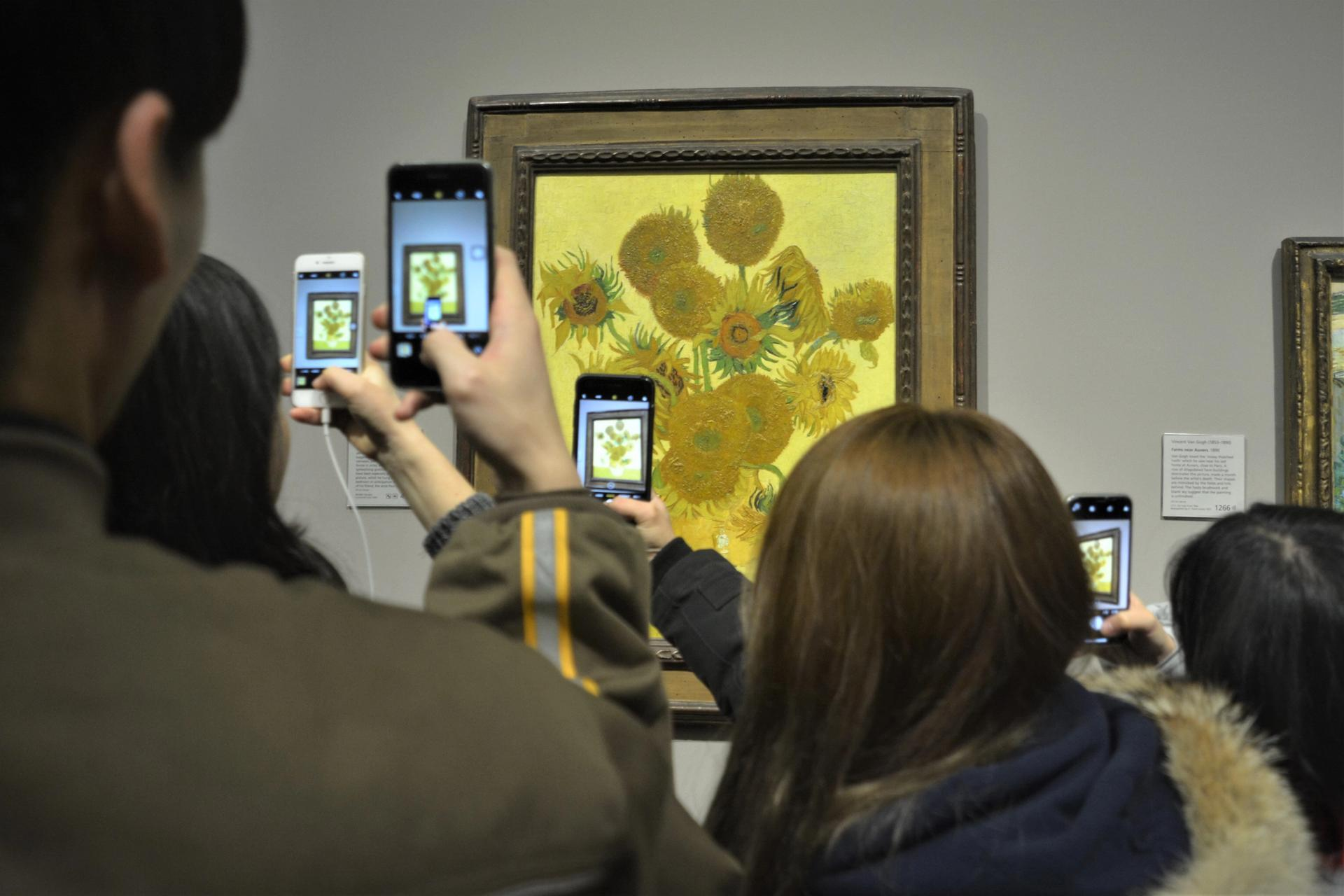 Temporarily un-Instagrammable: Vincent van Gogh's Sunflowers is among 60 masterpieces from London's National Gallery caught up in a Japanese museum closure Photo: Ka Yau Lee, on Flickr