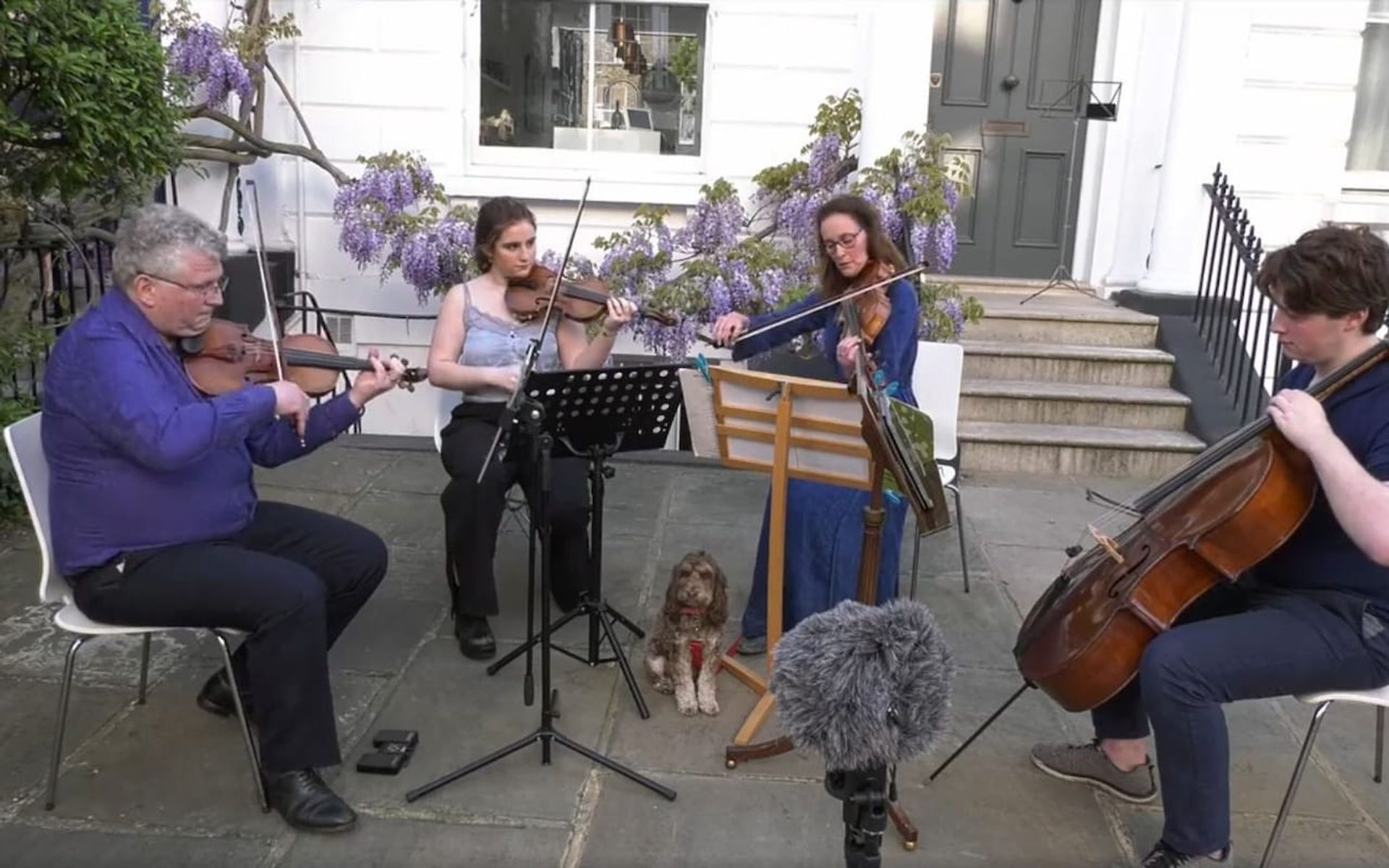 Helena Newman and family have been stopped by police from playing concerts to their neighbours. The dog is not thought to have been involved © Rafael Todes