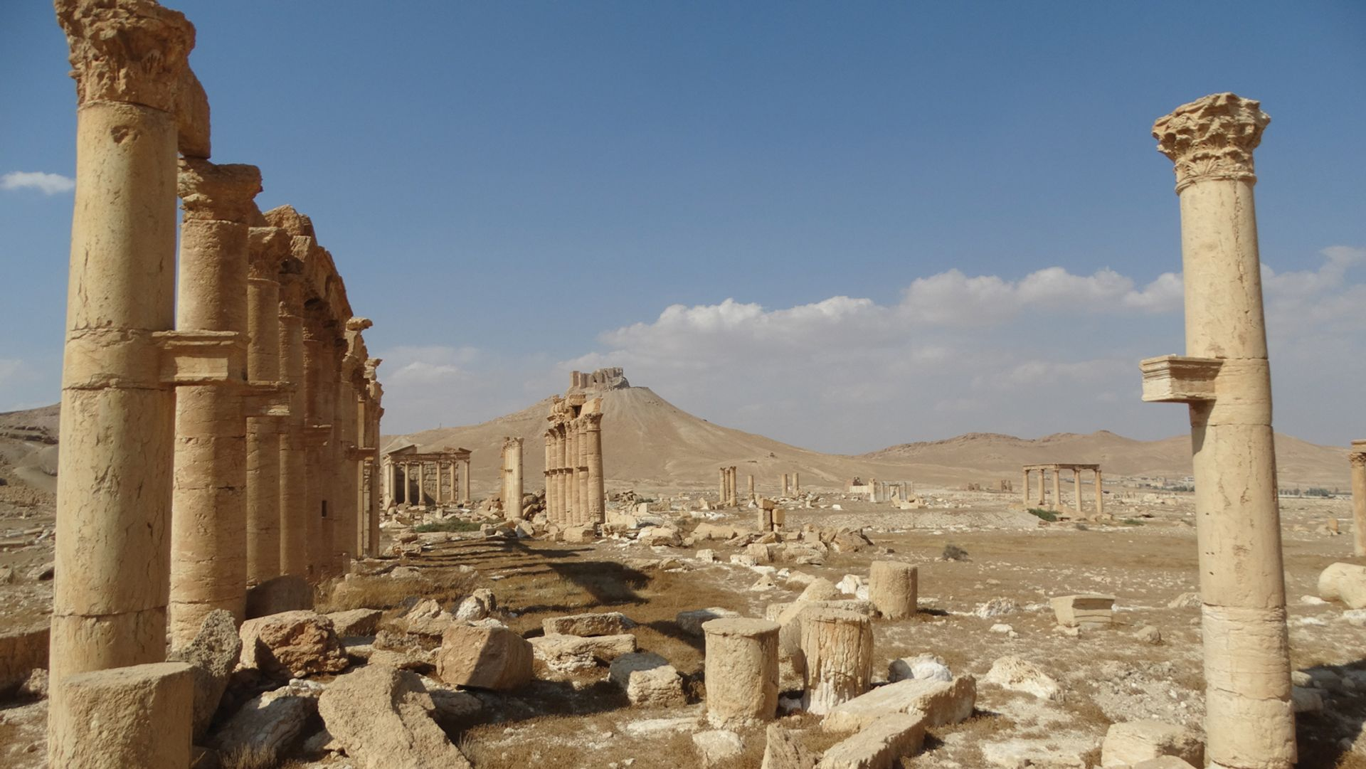 The first 25 years saw the accession of 'source countries' such as Syria, which saw its ancient Roman city of Palmyra attacked by terrorists in 2016 © Aladdin Hammami