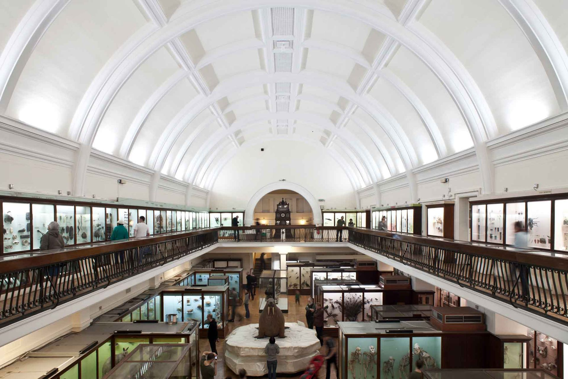 The Horniman Museum and Gardens in south London is leading a network of 12 UK institutions co-producing touring exhibitions based on their collections, with seed funding from the Art Fund Photo: Joel Knight