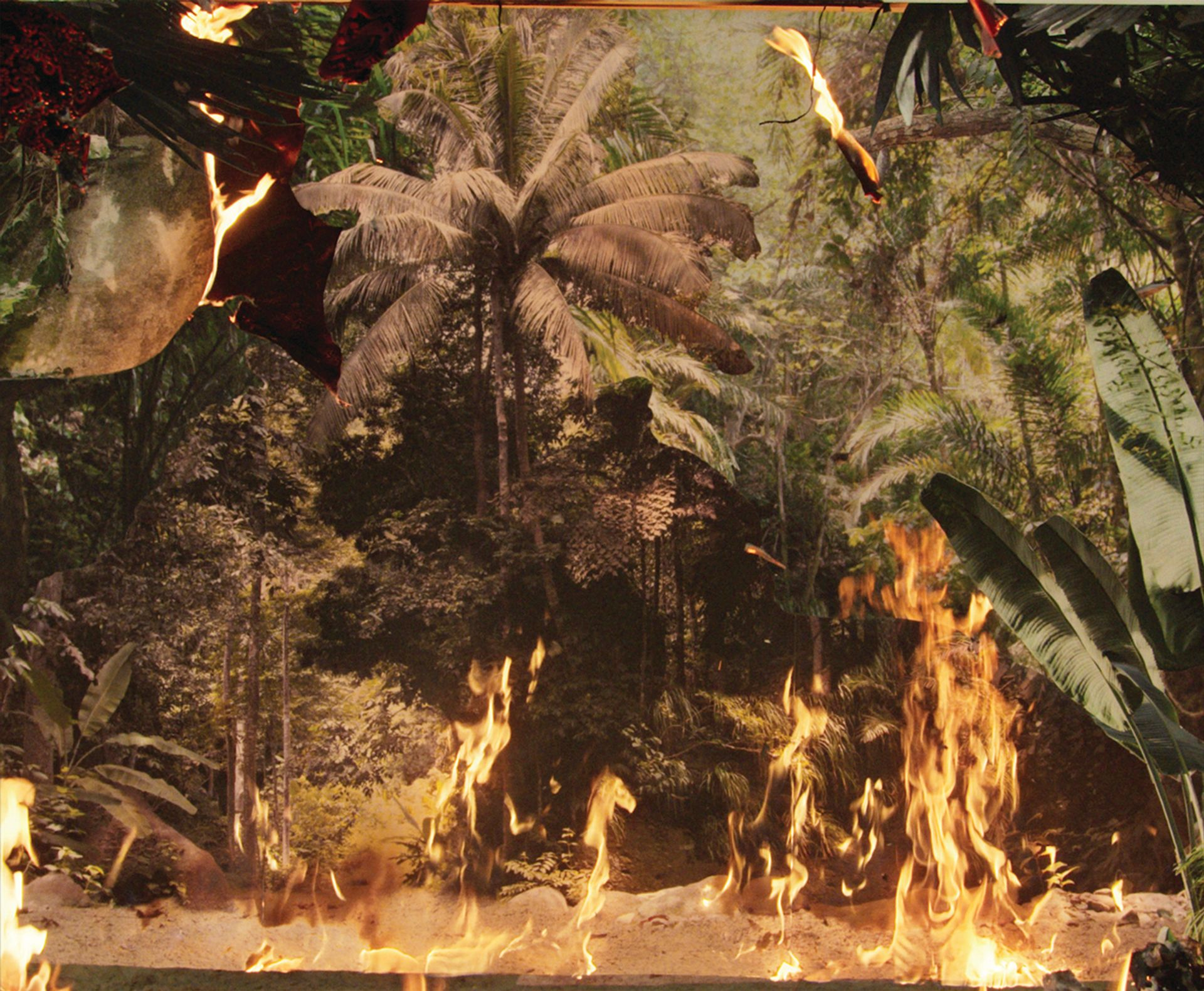 Noémie Goudal's film Below the Deep South (2021), depicting a tropical forest consumed by flames, is on show at the fair with London's Edel Assanti gallery, one of more than 550 members of the Gallery Climate Coalition © Noémie Goudal; courtesy of Edel Assanti