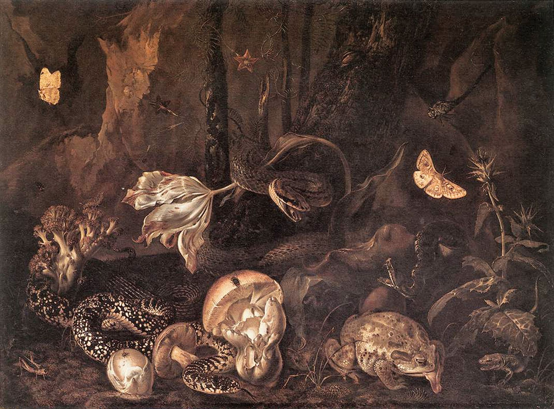 … you're sure of a big surprise: Otto Marseus van Schrieck, Still-Life with Insects, Amphibians, and Reptiles (1662) Courtesy of the Herzog Anton Ulrich-Museum, Braunschweig
