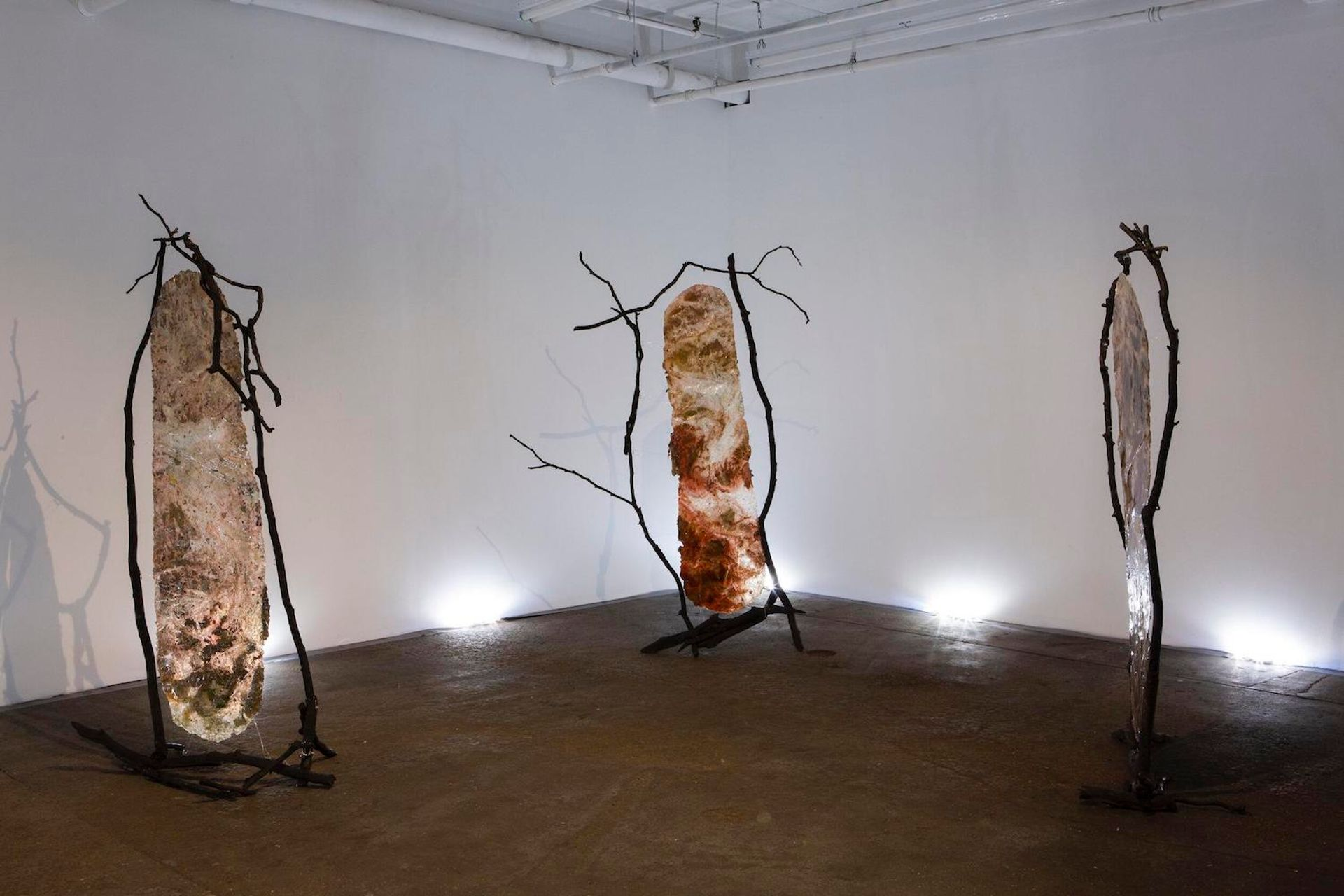 Installation view of Vanessa Thill's exhibition Balsam at Deli Gallery in Brooklyn