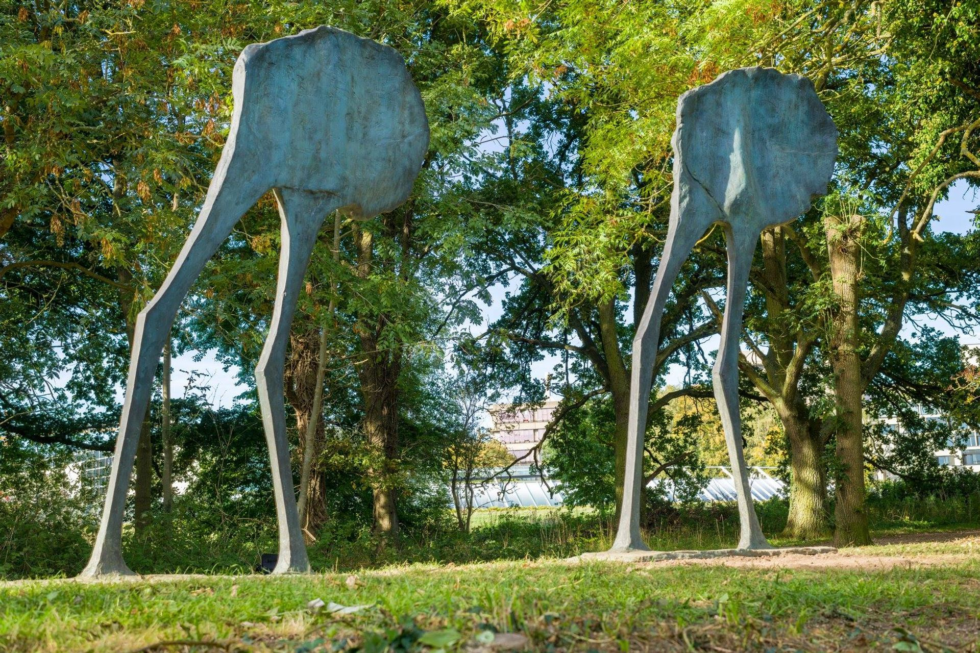 A pair of bronze sculptures, Mirage I and Mirage II, are on view in the Sainsbury Centre's sculpture park despite the UK lockdown Photo: Andy Crouch