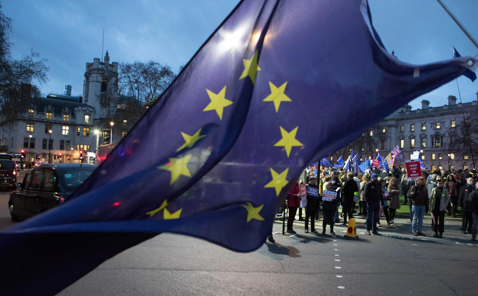 Protestors gathering both in support of and against Brexit outside the Houses of Parliament in London on 15 January Photo: © www.david-owens.co.uk