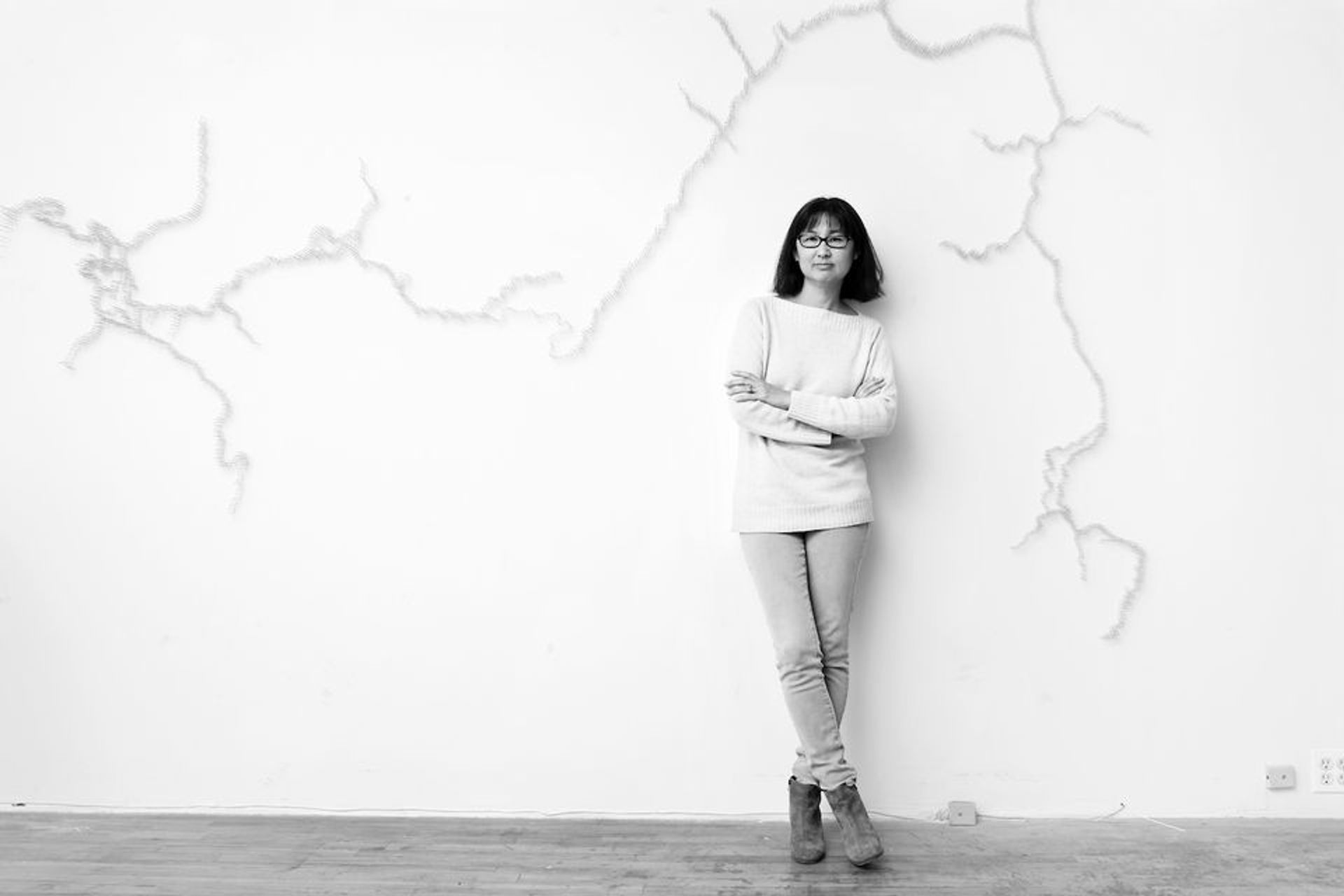 Maya Lin Jesse Frohman and courtesy of the artist