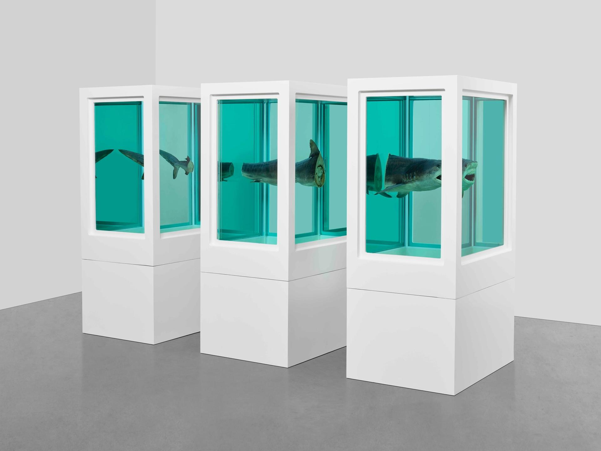 Damien Hirst's Myth Explored, Explained, Exploded (1993) is discussed on the artist's Instagram feed courtesy the artist