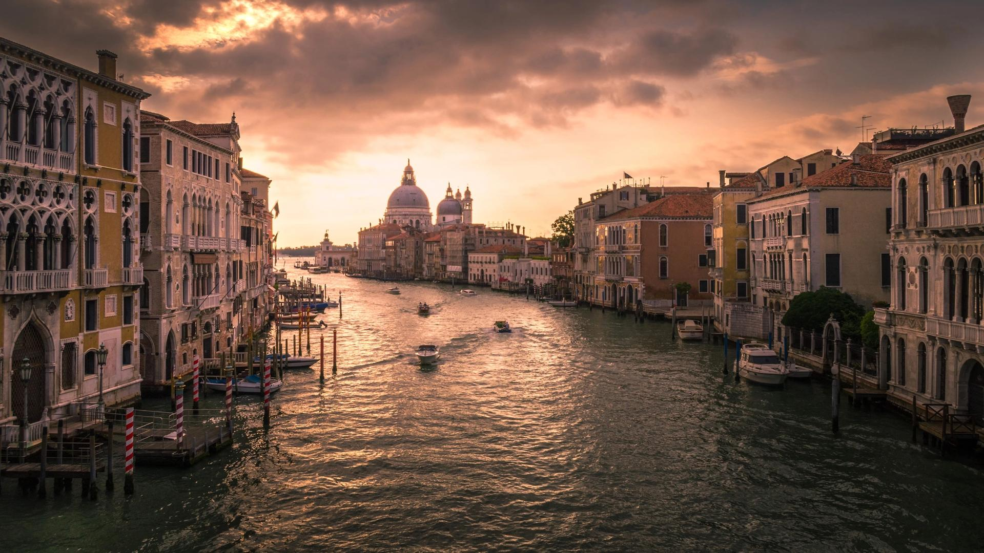 """Leaders at Venice's civic museums are among the signatories for a petition calling on the Italian government to create a """"national fund for culture"""""""
