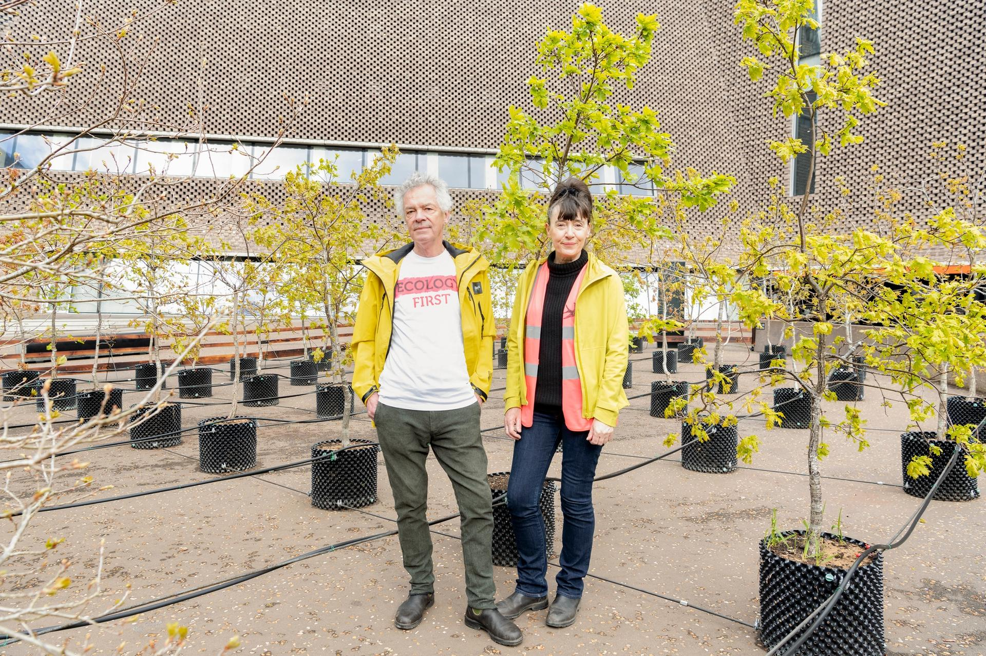 Artist duo Ackroyd and Harvey have planted 100 oak trees outside Tate Modern Ackroyd & Harvey, Beuys' Acorns, 2021. (c) Tate Photography (Seraphina Neville)
