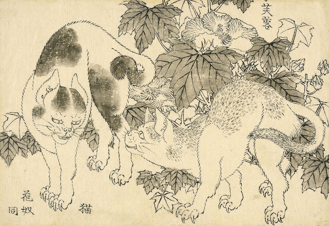 Katsushika Hokusai (1829), Cats and hibiscus: a standoff between two cats, with hibiscus ( fuyō ) behind © The Trustees of the British Museum