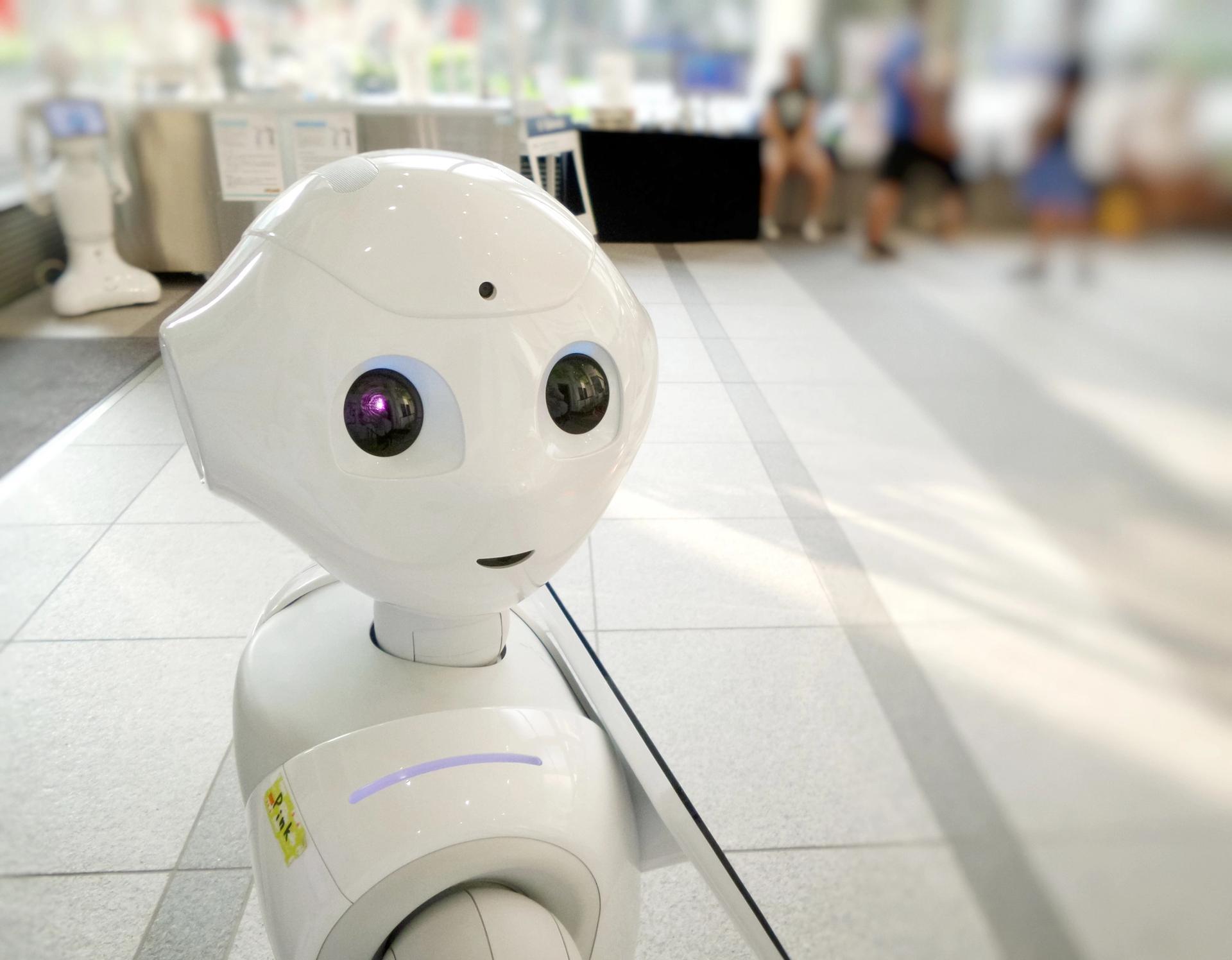 I, Robot? © Franck V