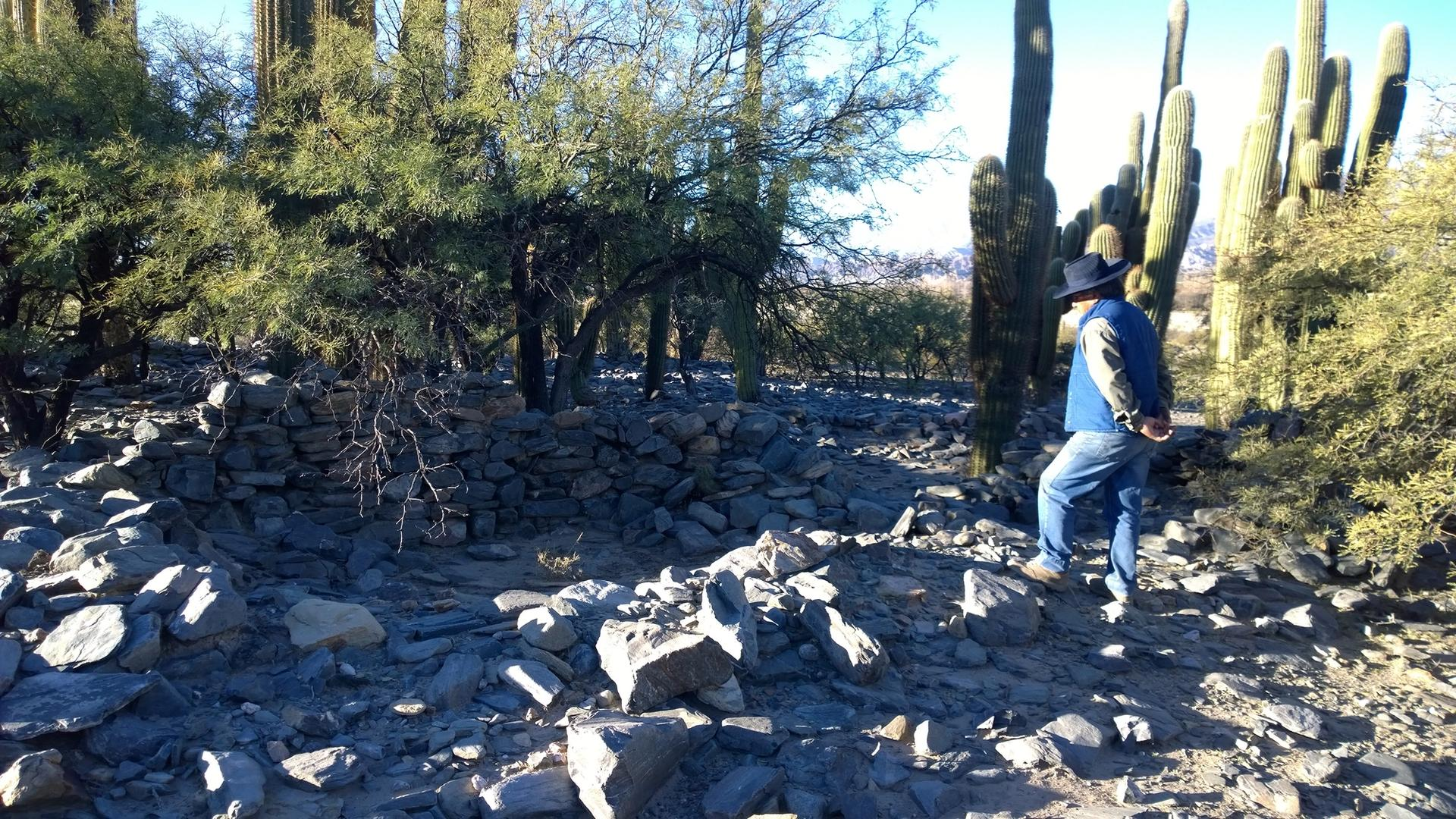 Archaeologists discovered the Cerro Quemado site with the help of a local high school student Photo: Catriel Greco