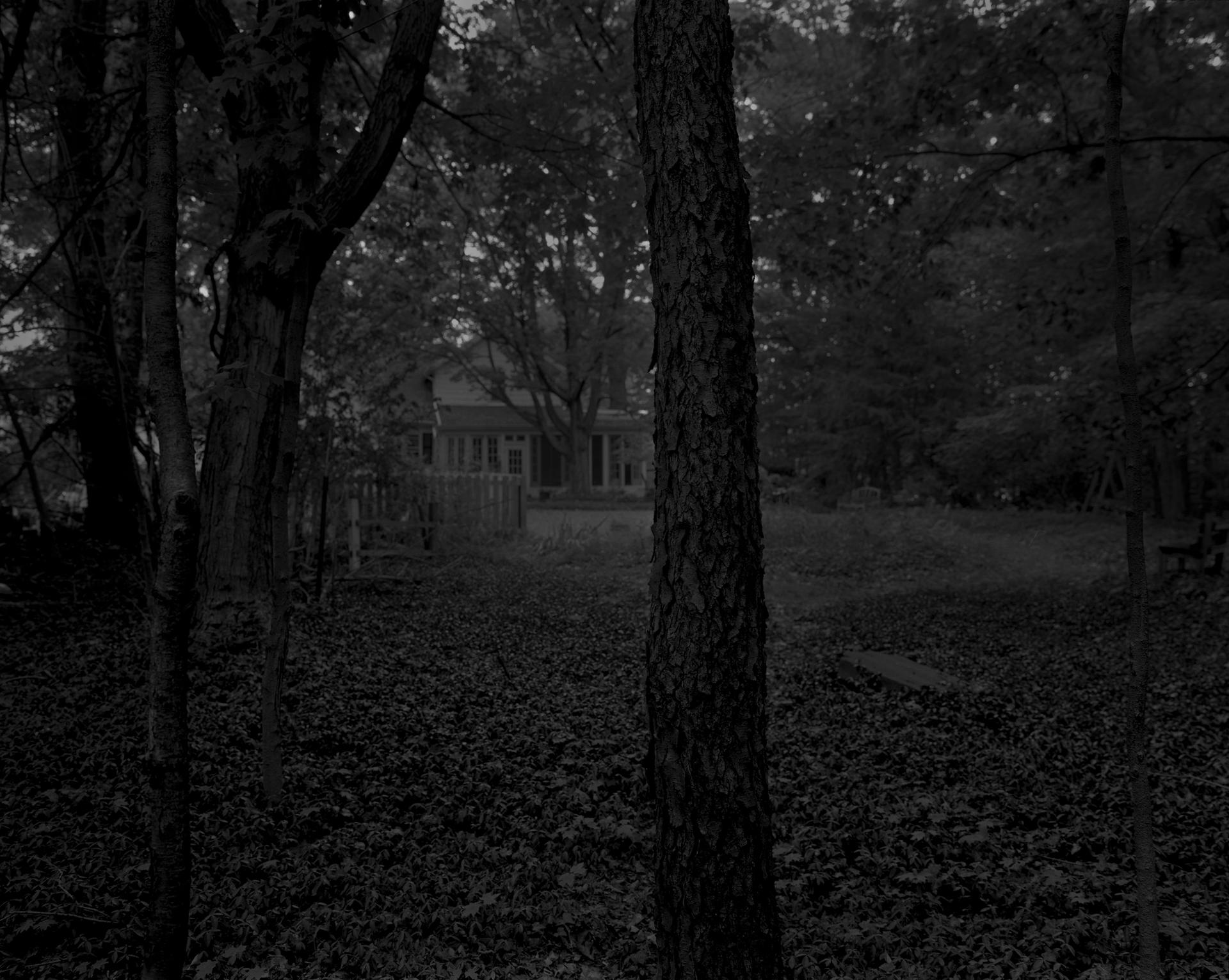 Dawoud Bey, Untitled #2 (Trees and Farmhouse), from the series Night Coming Tenderly, Black (2017) Rennie Collection, Vancouver. © Dawoud Bey