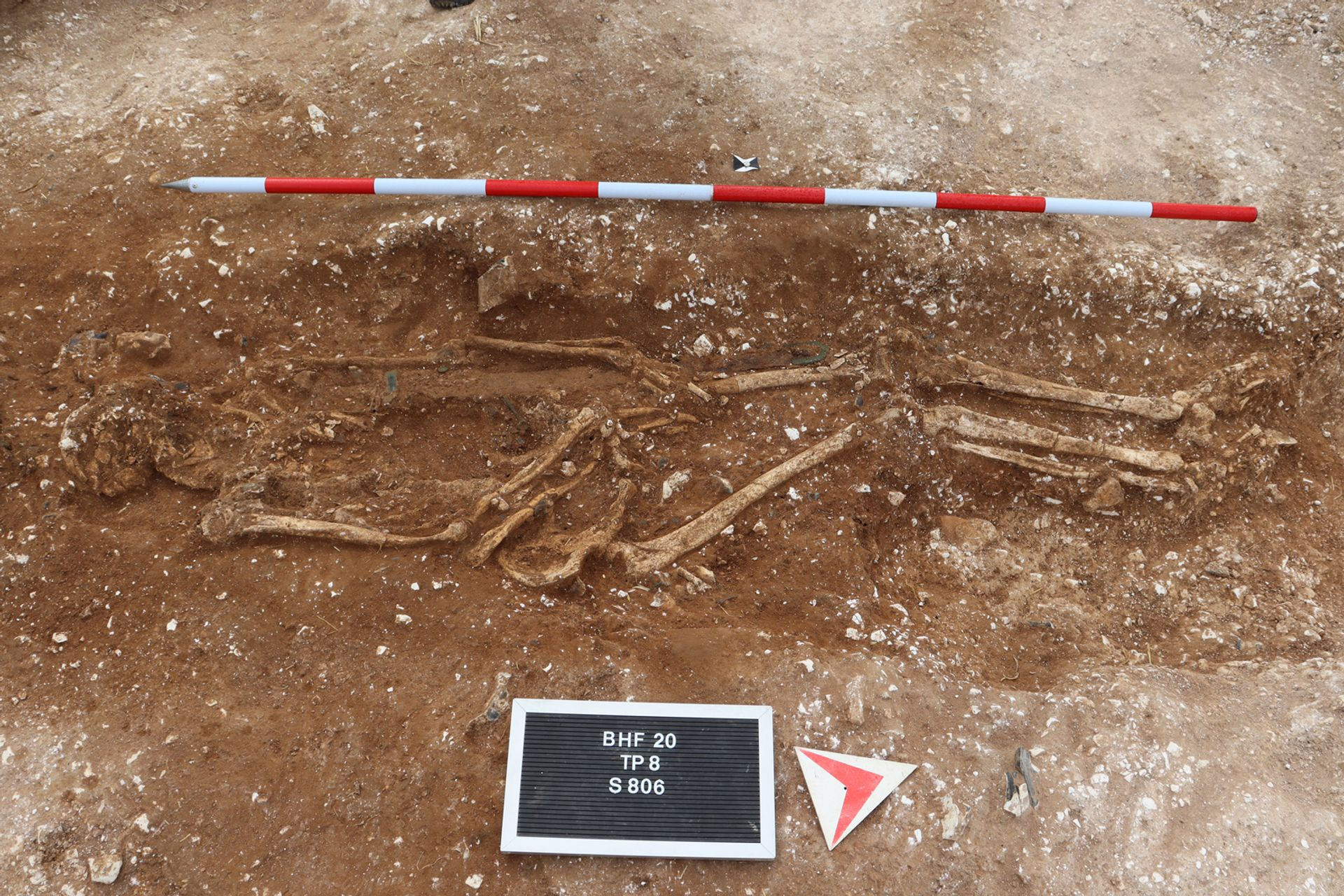 The remains of the 'Marlow Warlord' Courtesy of the University of Reading