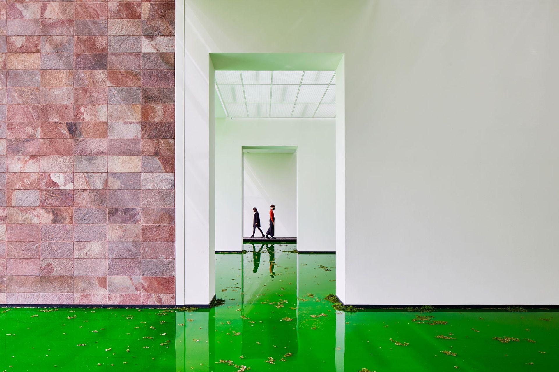 Installation view of Olafur Eliasson's Life installation at the Fondation Beyeler Courtesy of the artist; neugerriemschneider; Tanya Bonakdar Gallery. © 2021 Olafur Eliasson, Photo: Mark Niedermann