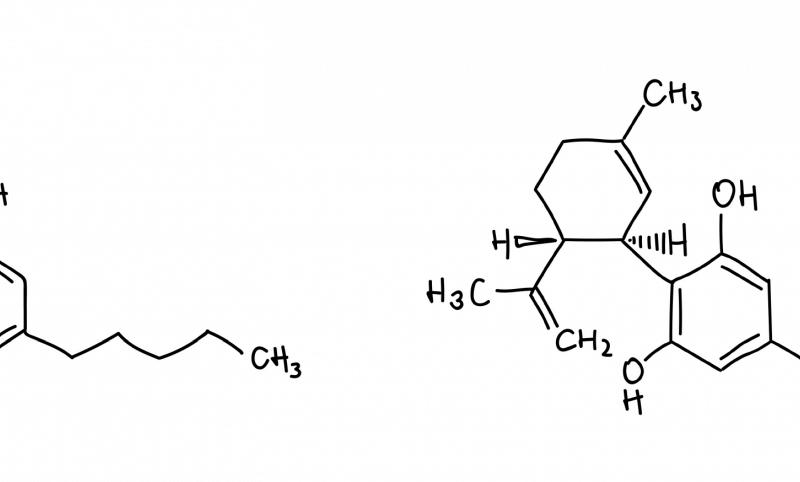 CBD und THC Strukturen