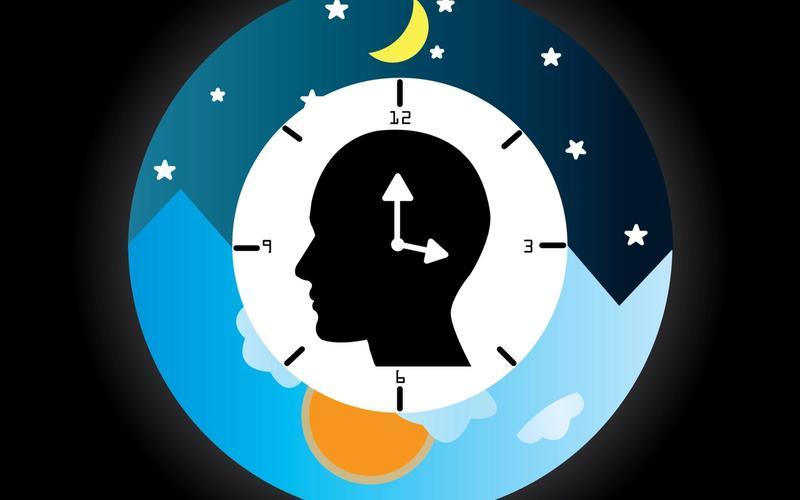 Schlafrhythmus Kopf Mensch Uhr