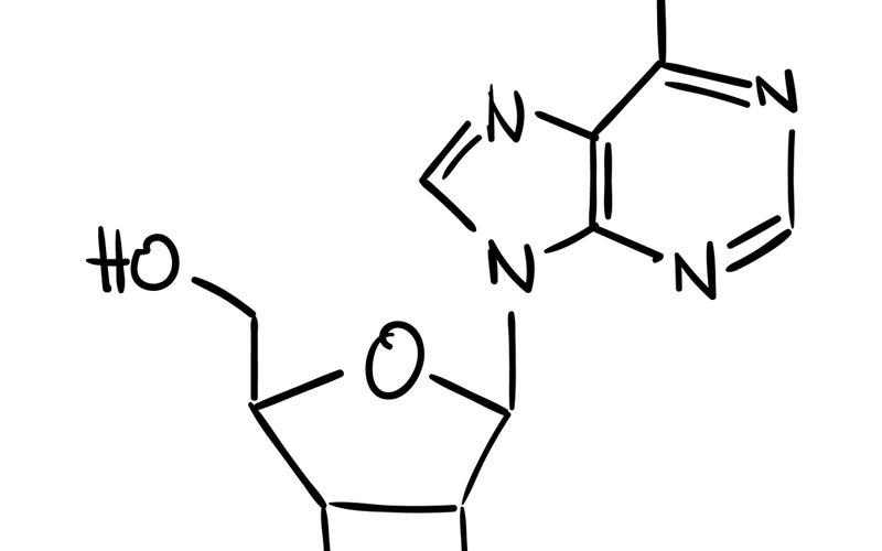 Adenosin Struktur