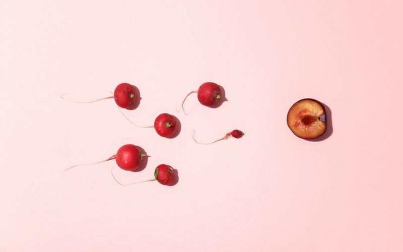 Spermien und Eizelle aus Gemüse