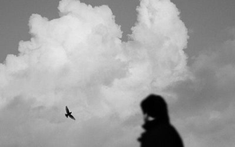Luzides Träumen Mann beobachtet fliegenden Vogel
