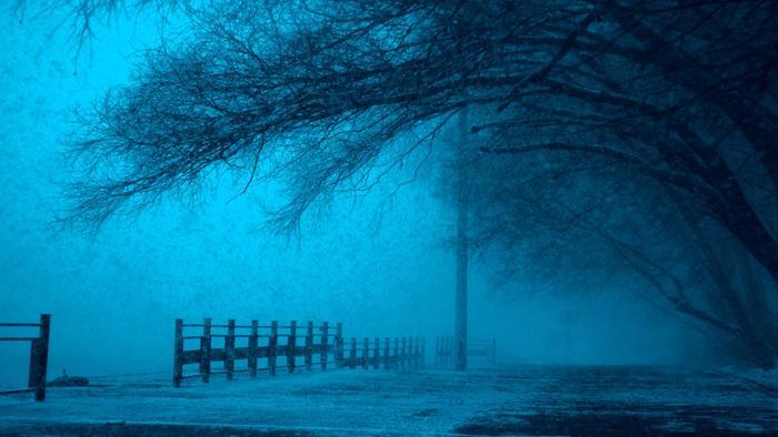 Wald im Winter Winterdepression