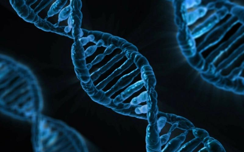 Doppelstrang-DNA blau, schwarzer Hintergrund
