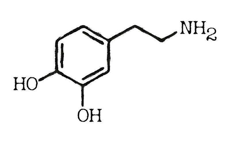 Dopamin Verbindung